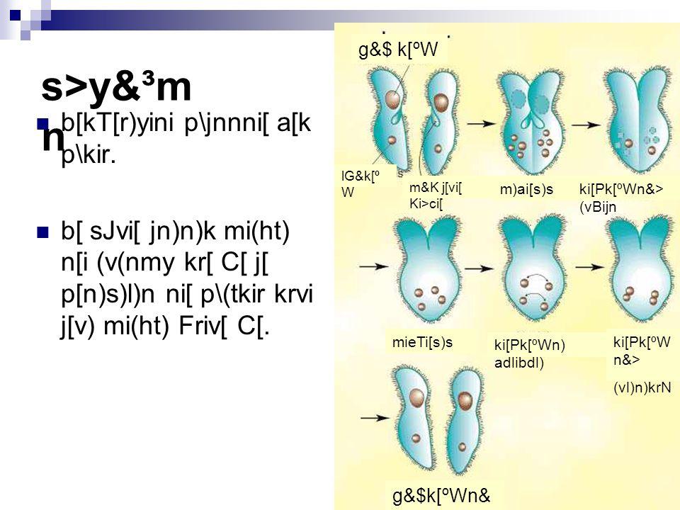 s>y&³mn b[kT[r)yini p\jnnni[ a[k p\kir.